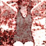 Medienrecht – Nacktfoto-Berichterstattung der BILD verletzt Persönlichkeitsrecht von Lena Meyer-Landrut (BGH)